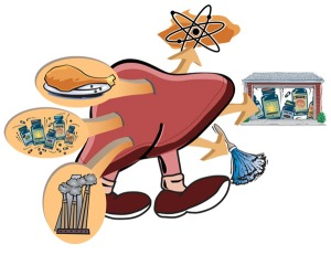 The multi-purpose liver (illustrated by Gerry Fey)